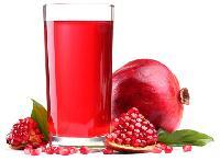 Pomegranate Juice Processing Plant