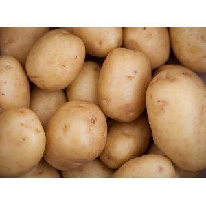 Table Potato