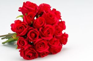 25 Red Roses In A Bouquet