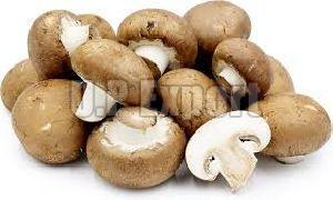 Fresh Cremini Mushroom