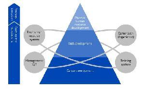 Bim Adoption And Implementation Services