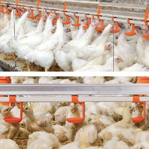 Poultry Water Softening Equipments In Hyderabad