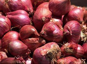 Indian Small Shallot Onion