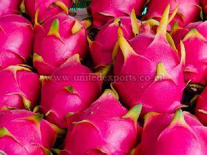Dragon Fruit at Best Price from draigan phal Suppliers, Wholesalers