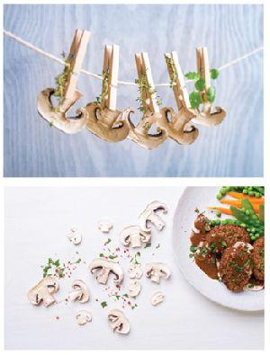 Dried Mushroom Innovations