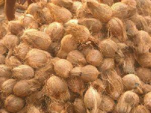 Husk Coconuts