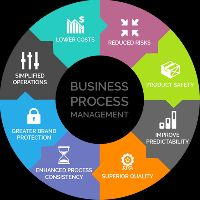 business process management services