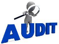 Statutory & Tax Audit Services