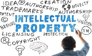 Intellectual Property Registration Services
