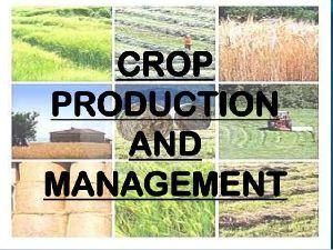 Crop Production & Management Services