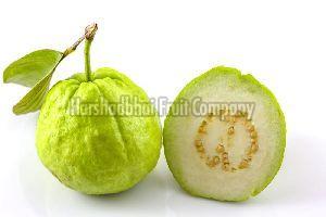 Fresh White Guava