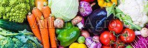 Fresh Vegetable 01