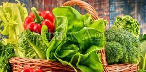Fresh Vegetable 02