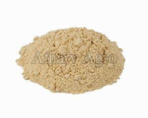 Onion Powder 02
