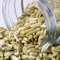 Oleoresin Fennel Seed