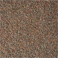 Brown Mustard Seeds - 01