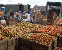 Processed Agro Foods