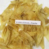 Dried Fish Popa Female Maws