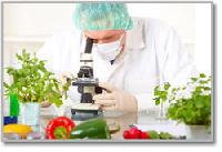Food Analysis Services