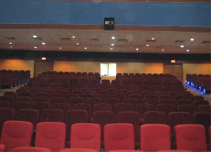 Multiplex Auditorium Chairs
