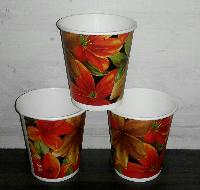 Biodegradable Disposable Paper Cups