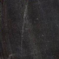 Black Bhaisalana Marble Slab - Ms 001