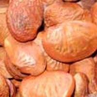 Karanj Natural Seeds