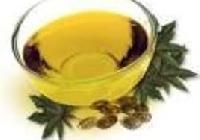 Castor Seeds And Oil