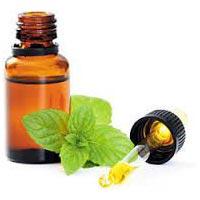 Mint Terpene Oil