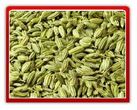 Fennel Seed