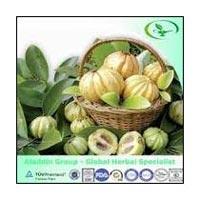 Garcinia Cambogia Raw Material