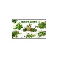 Herbs, Herbal Extracts