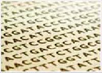 Bioinformatics Services