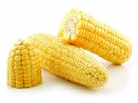 Broken Yellow Maize