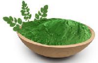 Moringa Dried Leaf Powder
