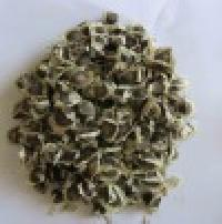 Moringa Oil Extraction Seeds