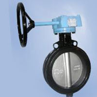 Single Piece Replaceable Seat Concentric Butterfly Valve