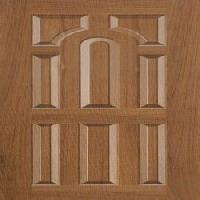 moulded panel skin doors