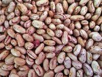 Organic Rajma Chitra