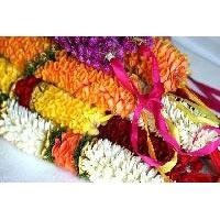 Fresh Flowers & Garlands