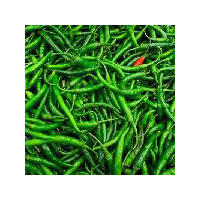 Fresh Green Chilli (g4)