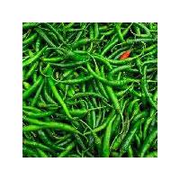 Fresh Green Chilli (g4)