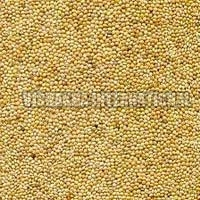 Natural Millet Seeds