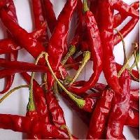 Teja Dried Red Chilli