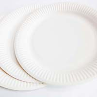 Disposable Paper Plates & Eco Friendly Disposable Plates in Pune - Manufacturers and Suppliers ...