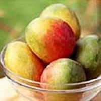 Banganapalli Mango