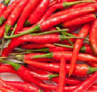 Red Dried Chilli