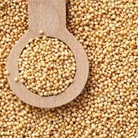 Organic Amaranth Seed