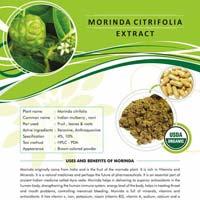 Morinda Citrifolia Extract