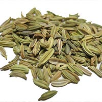 Fennel Seed Oil